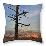 Bryce Canyon Dead Tree Sunset 3 Throw Pillow