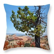 Bryce Canyon Fairyland Point Portrait Throw Pillow