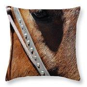 Bryce Canyon Horse Portrait Throw Pillow