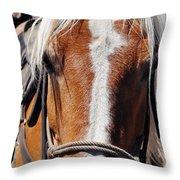 Bryce Canyon Horseback Ride Throw Pillow