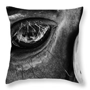 Bryce Canyon National Park Horse Bw Throw Pillow