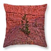 Bryce Canyon Pine Tree Throw Pillow