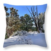 Bryce Canyon Snowfall Throw Pillow