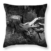 Bryce Canyon Tree Stump On A Ridge Throw Pillow