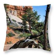 Spires On Navajo Trail Throw Pillow