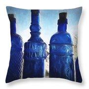 B's Blue Bottles Throw Pillow