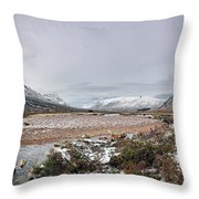 Buachaille Winter Panorama Throw Pillow