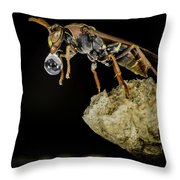 Bubble Blowing Wasp Throw Pillow