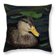 Bubble Duck Throw Pillow