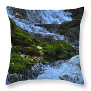 Bubbling Waterfall Throw Pillow