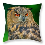 Bubo Bubo Throw Pillow
