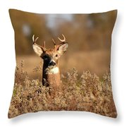 Buck In The Weeds Throw Pillow