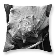 Bucket Of Sea Shells Throw Pillow