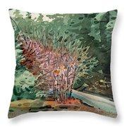 Buckeye And Redwoods Throw Pillow