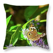 Buckeye Butterfly On The Move 1 Throw Pillow