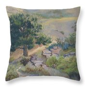 Buckhorn Canyon Throw Pillow