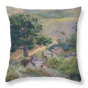 Buckhorn Canyon Throw Pillow