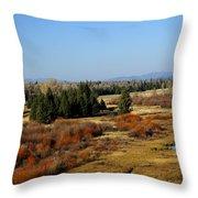 Buckhorn Ponds Throw Pillow
