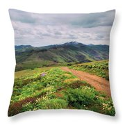 Buckskin Cyn June-3116-r1 Throw Pillow