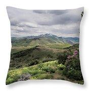 Buckskin Cyn June-3125-r2. Throw Pillow