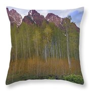 Buckskin Mtn And Friends Throw Pillow