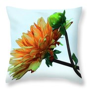 Bud And Blossom Throw Pillow