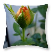 Bud Of A Rose Throw Pillow