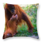 Budapest Zoo Throw Pillow
