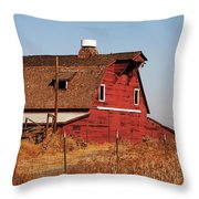 Buddhist Monk Sits Under Tree Throw Pillow by Ray Laskowitz - Printscapes