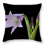 Budding Lily Throw Pillow