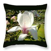 Budding Magnolia Throw Pillow