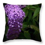 Buddleia Flower Throw Pillow