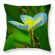 Buds And A Blossom Throw Pillow