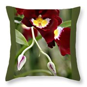 Buds And Blooms Orchid Throw Pillow