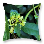 Buds And Blooms Throw Pillow