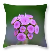 Buds In Purple Throw Pillow