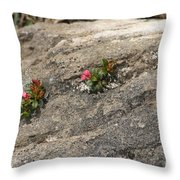 Buds Of Beauty Within Harshness Throw Pillow