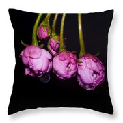 Buds Throw Pillow