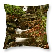 Buff Creek Falls Throw Pillow