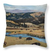Buffalo By A Stream Throw Pillow