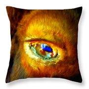 Buffalo Eye Throw Pillow