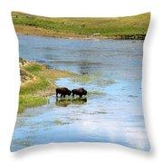 Buffalo Walk Throw Pillow