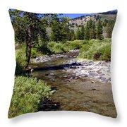 Buffalo Fork Throw Pillow