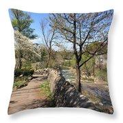 Buffalo Glen Park Williamsville Throw Pillow