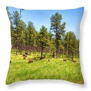 Buffalo Haven Throw Pillow