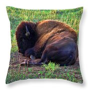 Buffalo In The Badlands Throw Pillow