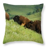 Buffalo On Hillside Throw Pillow