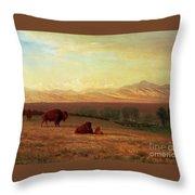 Buffalo On The Plains Throw Pillow