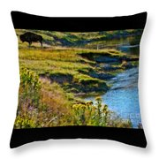 Buffalo River Bank Throw Pillow