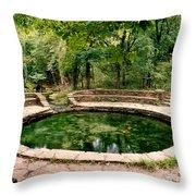 Buffalo Springs Throw Pillow
